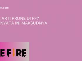 Apa Arti Prone Di FF? Ternyata Ini Maksudnya