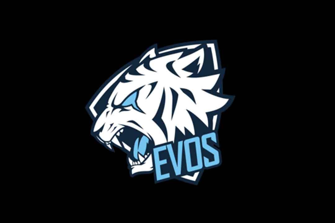 4 Syarat Masuk Evos Free Fire, Saatnya Anda Menjadi Pemain Profesional