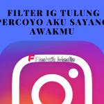 5 Cara Pakai Filter IG Tulung Percoyo Aku Sayang Awakmu
